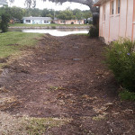 Swale - after